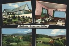 Gasthaus-Zum-Düstern-Born-Erbsen