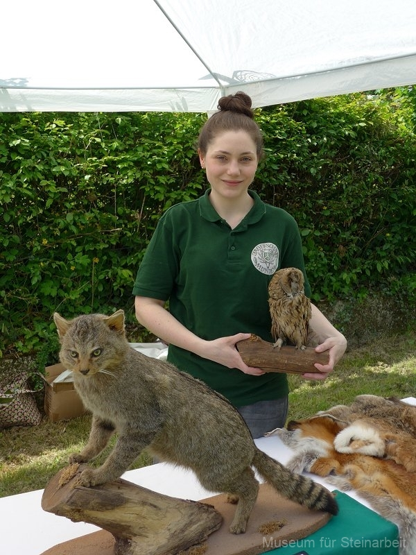 Der Info-Stand der Jägerschaft Münden  hielt viele Informationen zu den Tieren des Waldes bereit